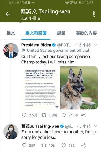 拜登愛犬過世蔡英文致哀 網友批:台灣人不如美國狗