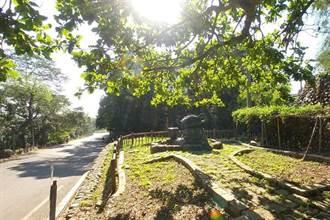 「森」呼吸  漫遊八卦山茶香步道