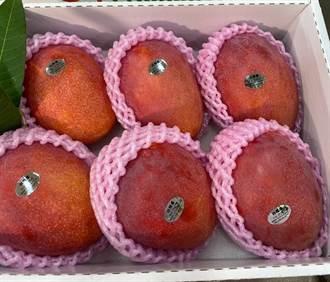 蟲蟲入侵 紐西蘭下令暫停進口台灣芒果、荔枝