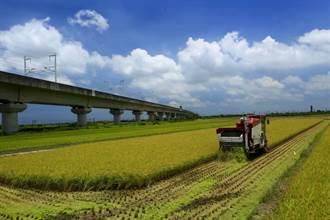 嘉南2期稻作部分地區供灌與否未定案 農民直呼「意外」