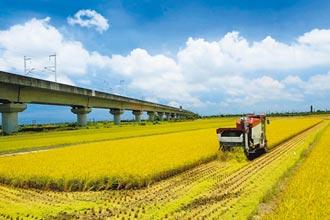 嘉南二期稻作僅部分地區供灌 農民意外