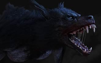奈及利亞驚見「狼人」爆頭亡 恐怖畫面瘋傳