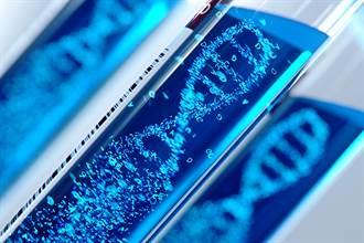 早期新冠病毒基因序列資料被刪 專家:從雲端恢復部份資訊
