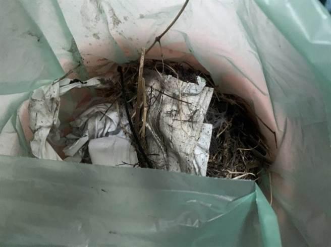 有網友發現廚房惡臭從抽油煙機飄出,探頭一看,裡頭竟暗藏小鳥家族的巢穴。(圖/Dcard)