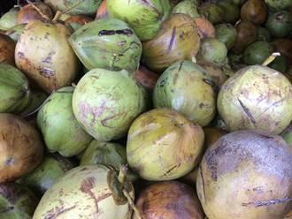 網購機車零件收到椰子以為被騙 眾人一看讚爆賣家