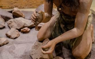 以色列史前遺址出土新種早期人類  特殊長相震驚考古界
