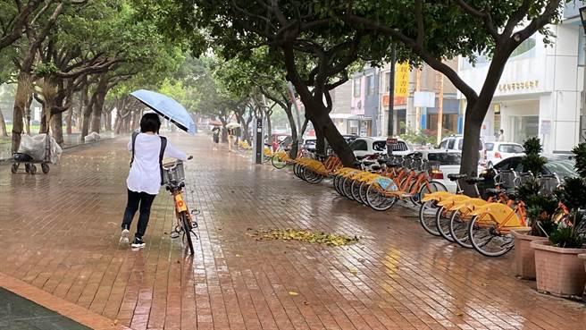 台中市近午下雨,草悟道遊客人跡稀少。(陳淑芬攝)