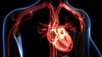 新冠病毒另有致命威脅!難以預防的心肌炎 致死率高