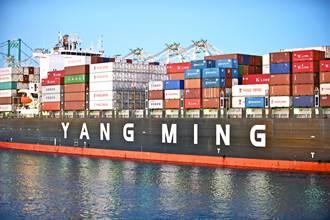 台驊「反向加碼」船票 董事會通過10億額度認購陽明現增
