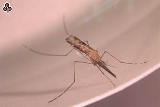 WHO官宣認證:中國大陸已消除瘧疾