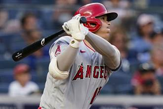 MLB》大谷翔平狂吸40%賭金 被看好獲選MVP