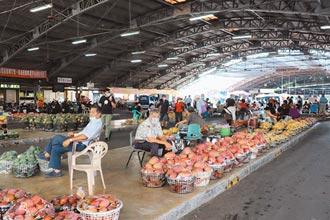 台南芒果產地價每台斤剩6元 果農哀號