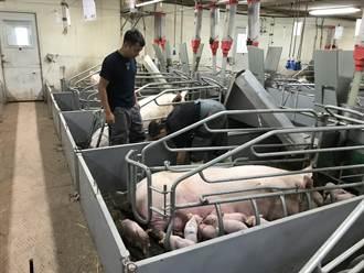 養豬基金輔導台南豬場升級 業界盼計畫展延至明年6月