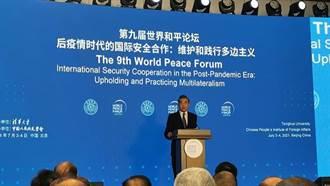 王毅談伊核:美應盡快重返伊核協議 中方倡議設海灣安全對話平台