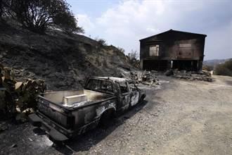 賽普勒斯森林火災釀4死 近半世紀規模最大