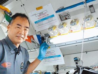 美日規範限制 台灣放棄送稻米上太空
