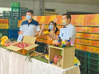 南化芒果促銷 直播半小時賣100箱