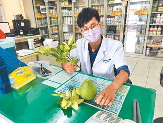 麻豆植物醫生 為柚樹健康把關