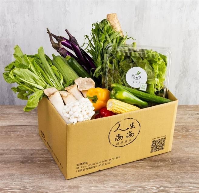「人生海海蔬果專車」蔬菜箱,可自由選配,也有不同主題集結成箱的蔬菜箱。(圖/橘焱國際)