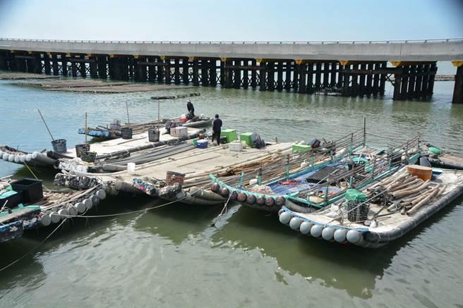 疫情又要面對颱風威脅,雲林縣漁民展開防颱作業減少損失。(張朝欣攝)
