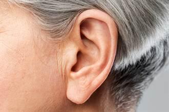 婆婆哭喊耳朵痛 媳婦滴油後鑽出一條長蟲嚇壞送醫