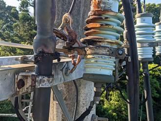 台南楠西區1700戶大停電 凶手找到了