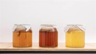風靡歐美最夯飲品 康普茶跟康普酵素一樣嗎?營養師解惑