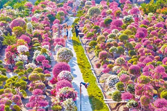 田尾鄉公路花園 畫為休閒農業區
