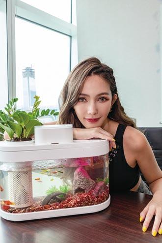 米客邦智慧生態魚缸 開賣首日熱銷