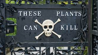 全球最毒花園!遊客需穿防護衣 亂聞花曝恐怖下場