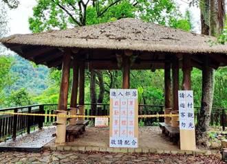 微解封心驚驚 阿里山鄒族投票95.1%反部落步道、涼亭開放