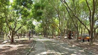東勢林業文化園區14日開園 入園上限300人