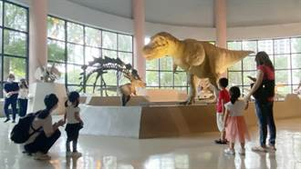 恐龍又來了 科博館微解封首日大小恐龍迷爭睹