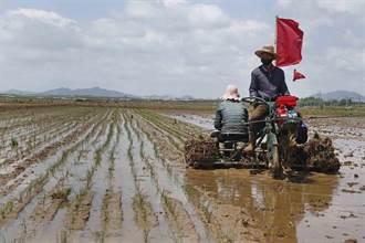 聯合國報告:北韓人民逾四成營養不良 下月恐爆糧食危機