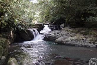 三級延長適度鬆綁  新竹林區部份開放資訊