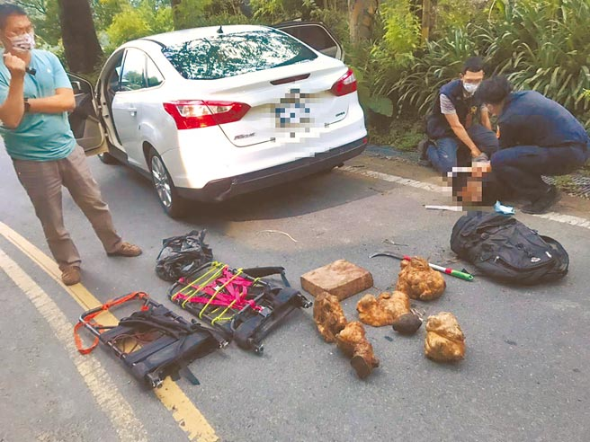保七刑大日前在南投奧萬大附近,逮捕3名越南籍逃逸移工盜取紅檜樹瘤、扁柏等珍貴林木(見圖)。(警方提供/李文正台北傳真)