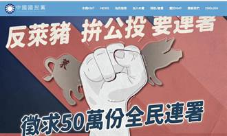 蔡詩萍》選民不買單,什麼共識都沒有意義!
