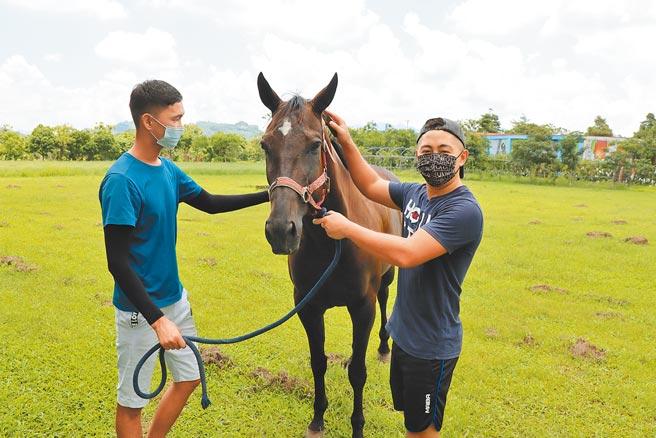 走馬瀨農場哈薩克飆馬特技秀表演者Dastan(右)與Islan疫情期間每天除了練習,還要照料馬匹。(劉秀芬攝)