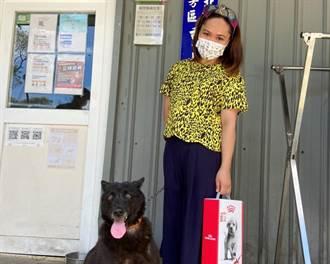 疫情採線上認養 新北動保處幫918隻犬貓找到新家