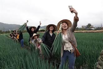 宜蘭遊樂找「鹿」子 「斑比山丘」以及「星寶 l 間小路農場」目前管制開放情形