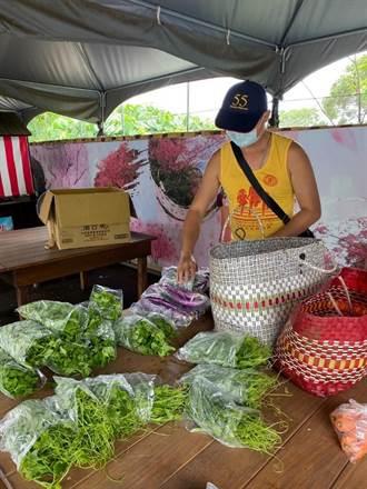 淡水樹興社區疫情下大團結 社區青農推「蔬菜箱」還自送到家
