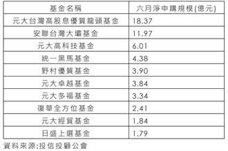 「元大五小福」台股系列基金 六月瘋狂吸金
