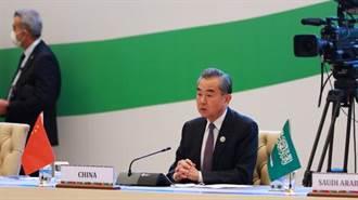 王毅:支持打通連接中亞和南亞的南北通道建設