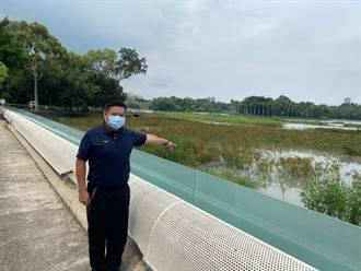 澄清湖像沼澤 鳳山阿榮接獲陳情 水公司10天內將清淤