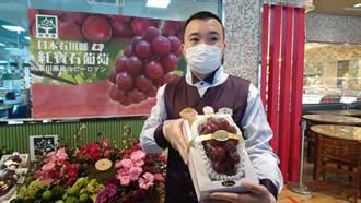 「葡萄界的愛馬仕」日本紅寶石葡萄一顆破萬台灣人瘋搶