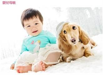 如何讓孩子與寵物安全互動?看動物行為治療師怎麼做