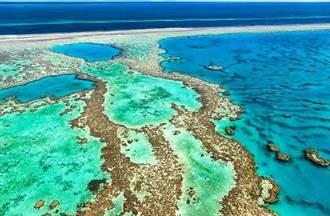大堡礁恐被降級為瀕危世界遺產 澳洲控陸有政治動機