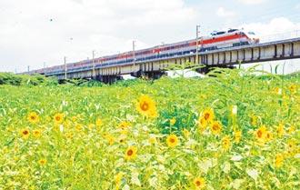 花卉妝點高屏溪左岸 鐵道好風光