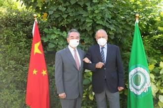 阿爾及利亞總統會見王毅 盼共建一帶一路