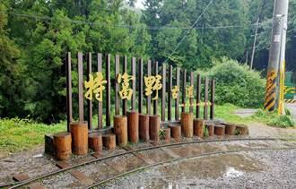 阿里山熱門登山點 特富野古道8月中起封閉整修1年